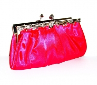 Fuschia Pink Clutch Bag